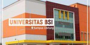 Ayo Daftar Kuliah di Universitas BSI Cibitung Jalur Beasiswa KIP 2021/2022